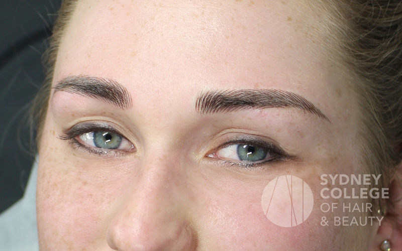 Government Microblading Qualifications